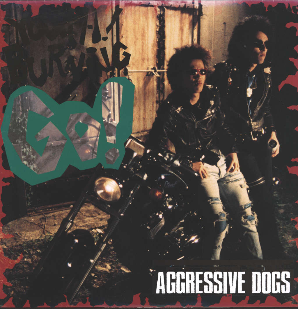 Aggressive Dogs: Youth! Burning Go!, Mini LP (Vinyl)