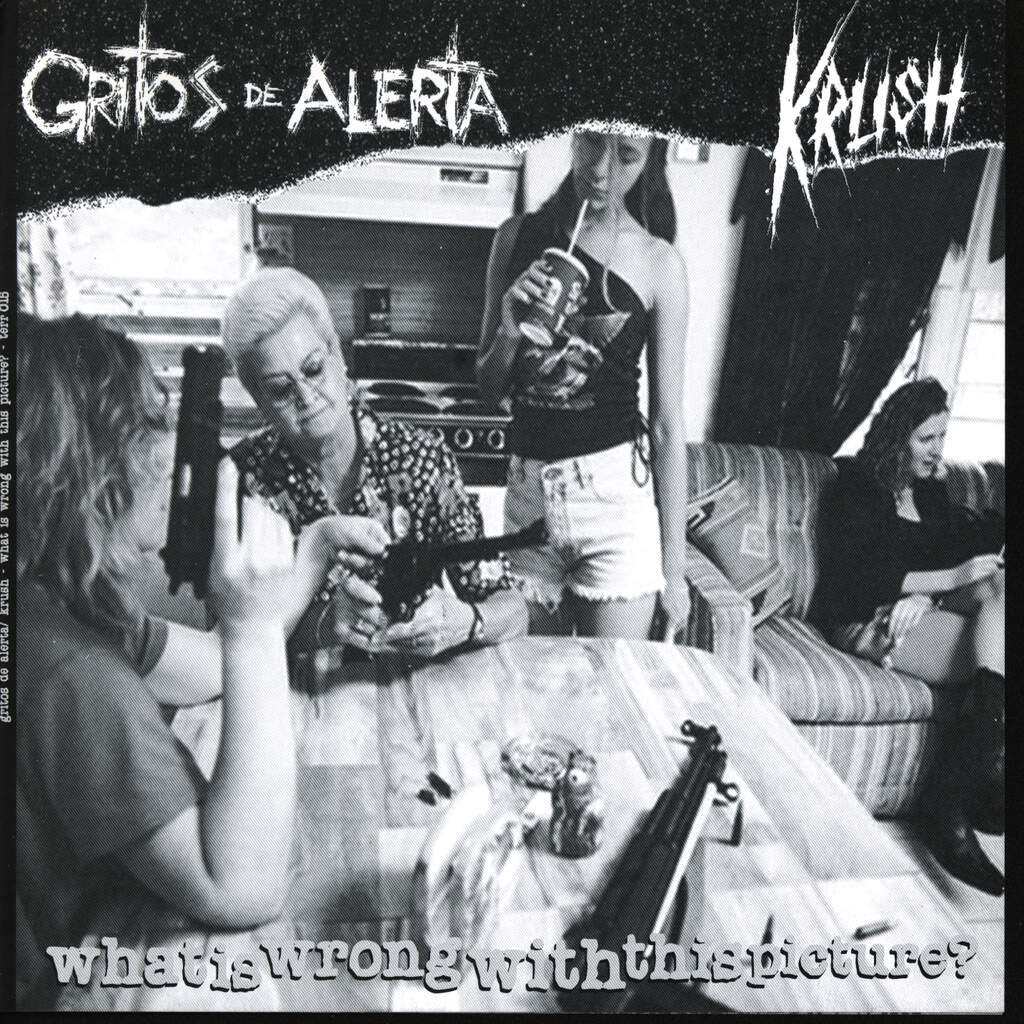 "Gritos De Alerta: What Is Wrong With This Picture?, 7"" Single (Vinyl)"