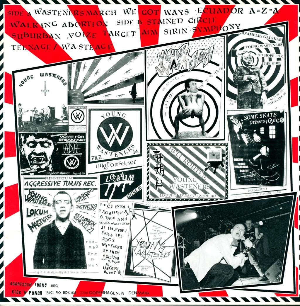 Young Wasteners: We Got Ways, LP (Vinyl)