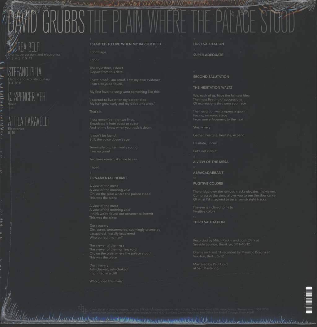 David Grubbs: The Plain Where The Palace Stood, LP (Vinyl)