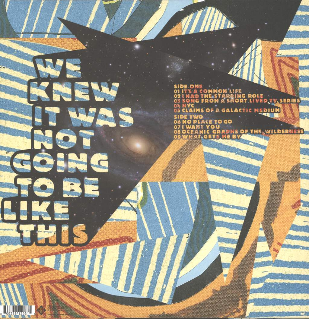 Surf City: We Knew It Was Not Going To Be Like This, LP (Vinyl)