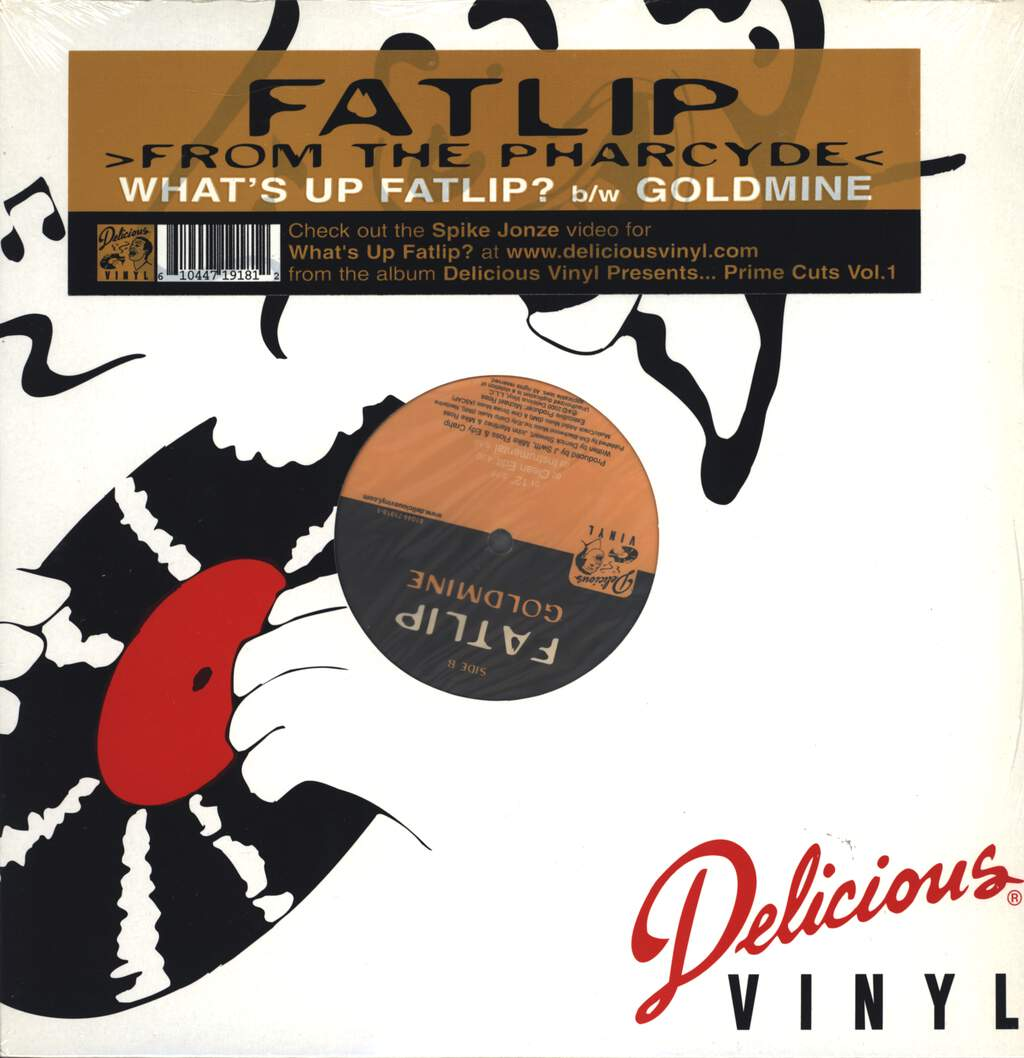 "Fat Lip: What's Up Fatlip? / Goldmine, 12"" Maxi Single (Vinyl)"