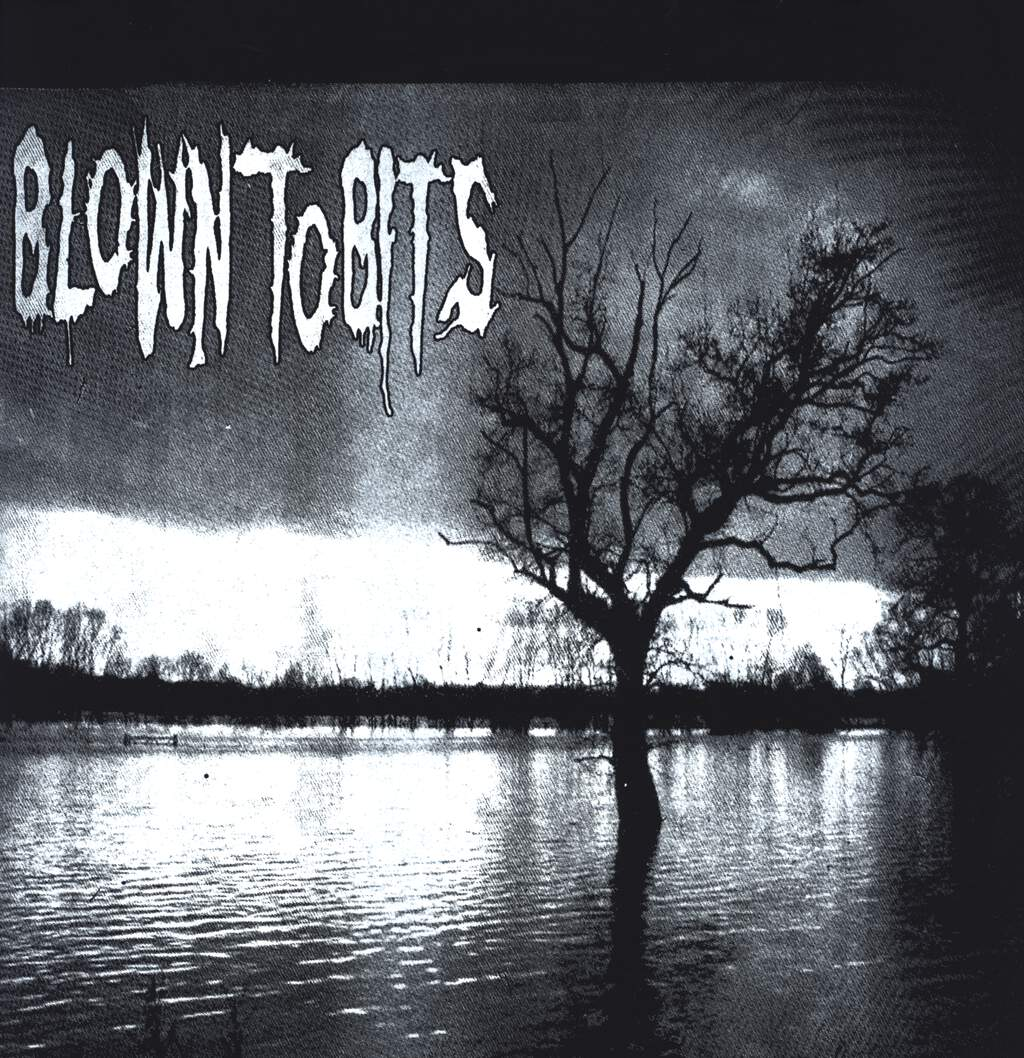 Blown To Bits: Blown To Bits Benefit Record, LP (Vinyl)