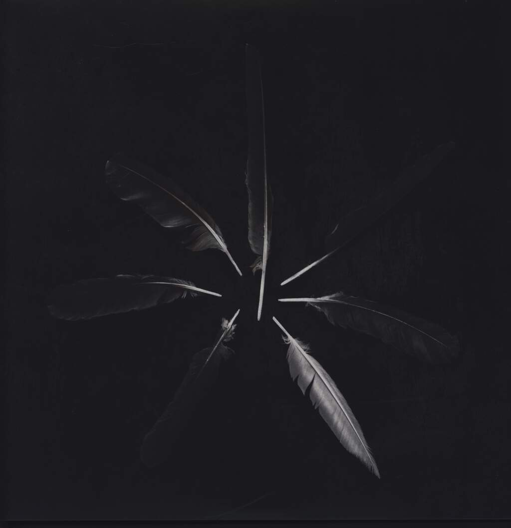Caspian: Dust And Disquiet, LP (Vinyl)