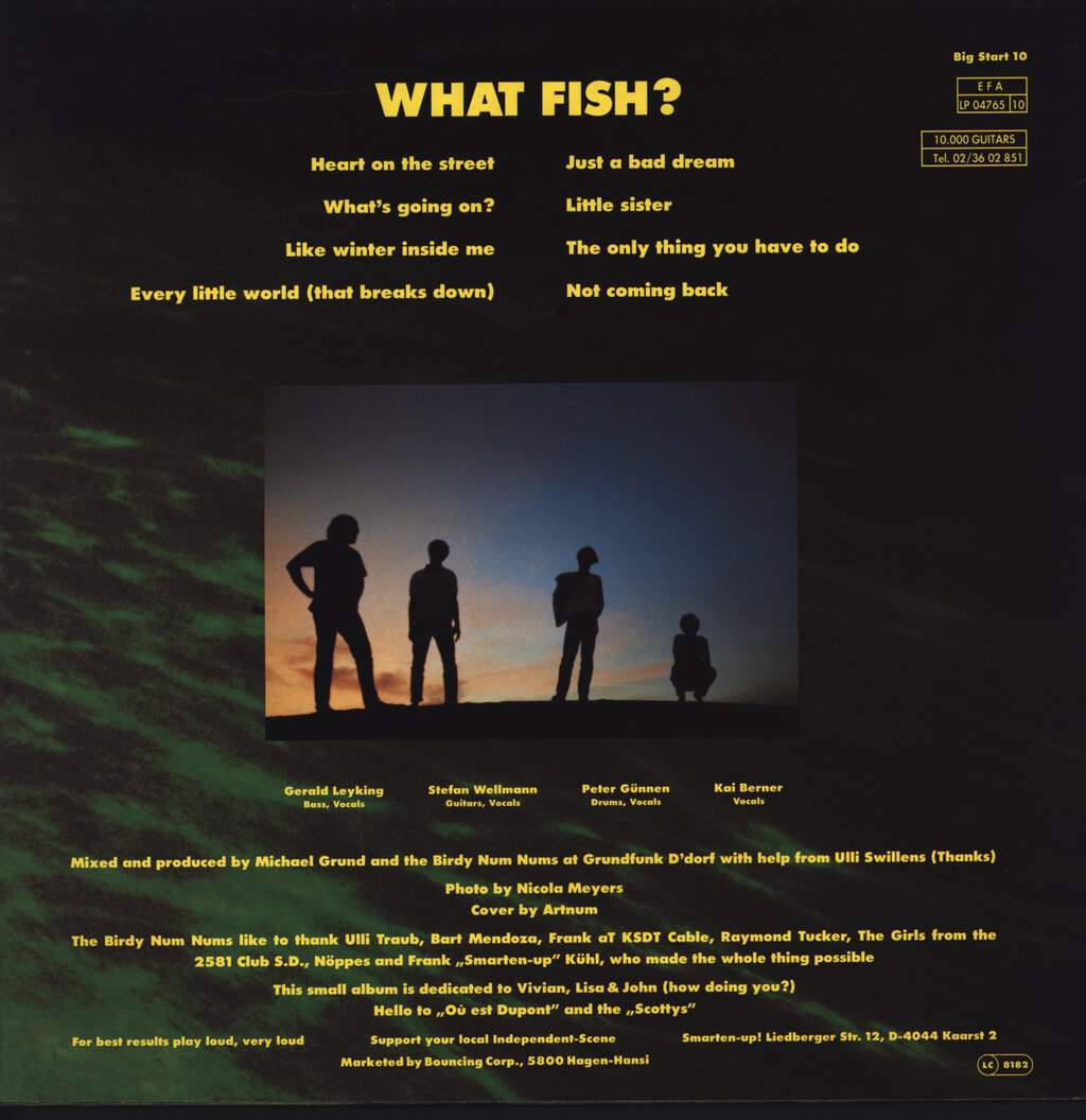 The Birdy Num Nums: What Fish?, LP (Vinyl)