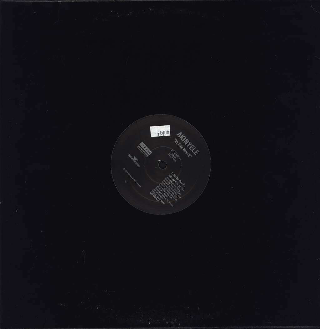 "Akinyele: In The World, 12"" Maxi Single (Vinyl)"