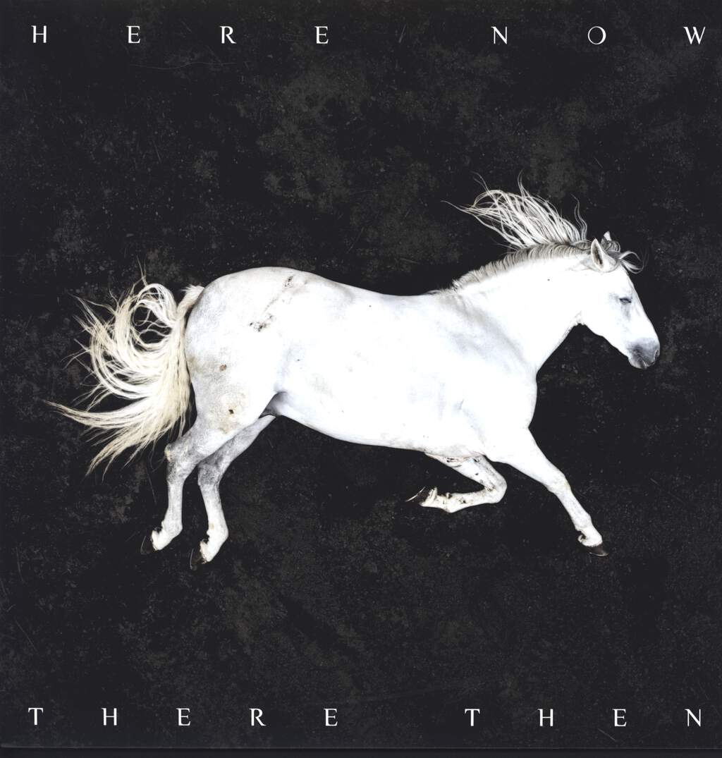 DOOL: Here Now, There Then, LP (Vinyl)