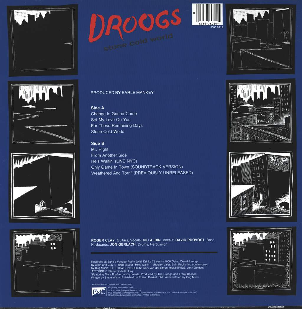 Droogs: Stone Cold World, LP (Vinyl)