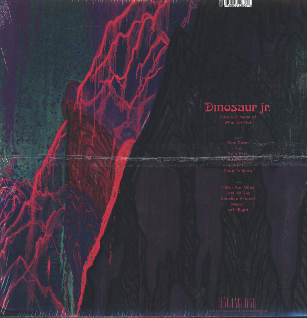 Dinosaur Jr: Give A Glimpse Of What Yer Not, LP (Vinyl)