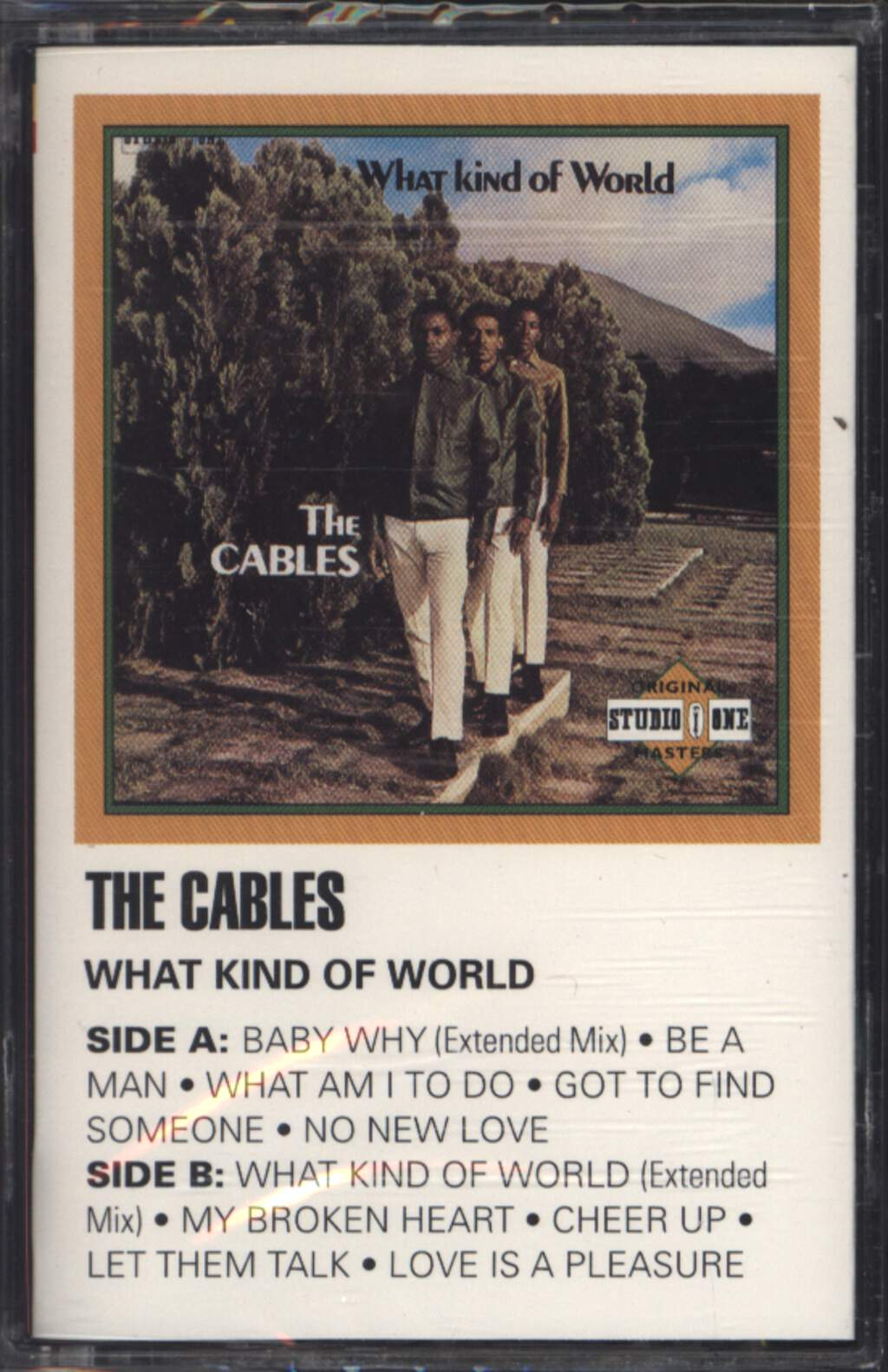 The Cables: What Kind Of World, Compact Cassette