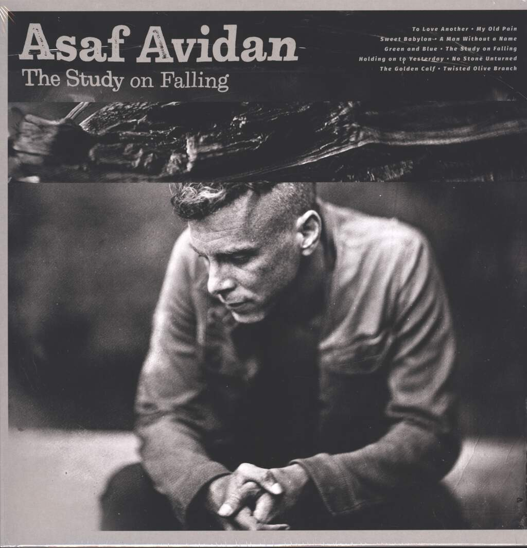 Asaf Avidan: The Study On Falling, LP (Vinyl)