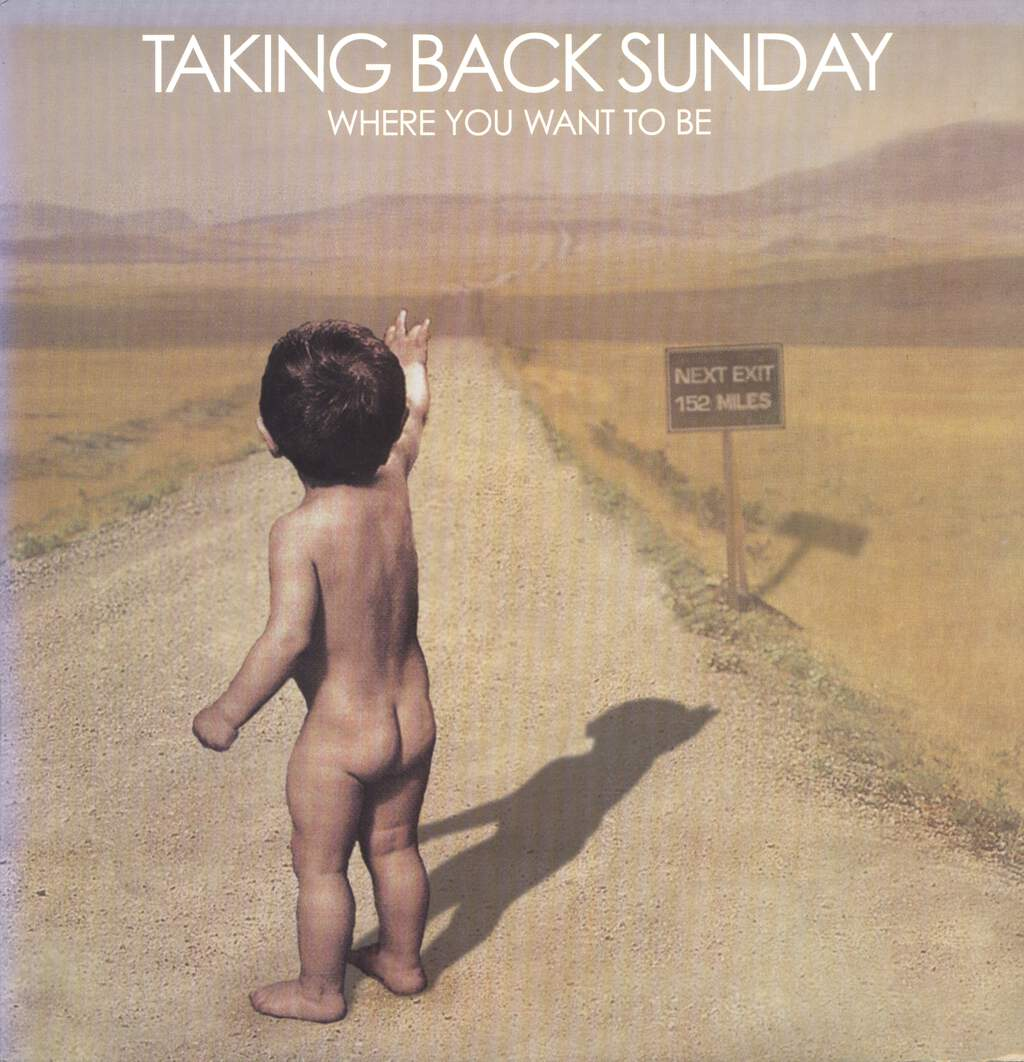 Taking Back Sunday: Where You Want To Be, LP (Vinyl)