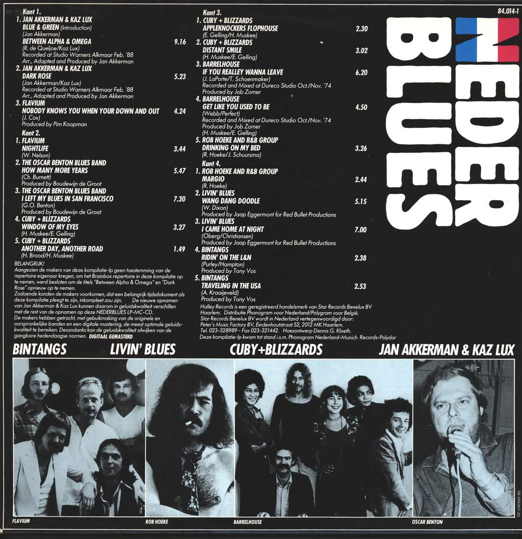 Various: Nederblues, LP (Vinyl)
