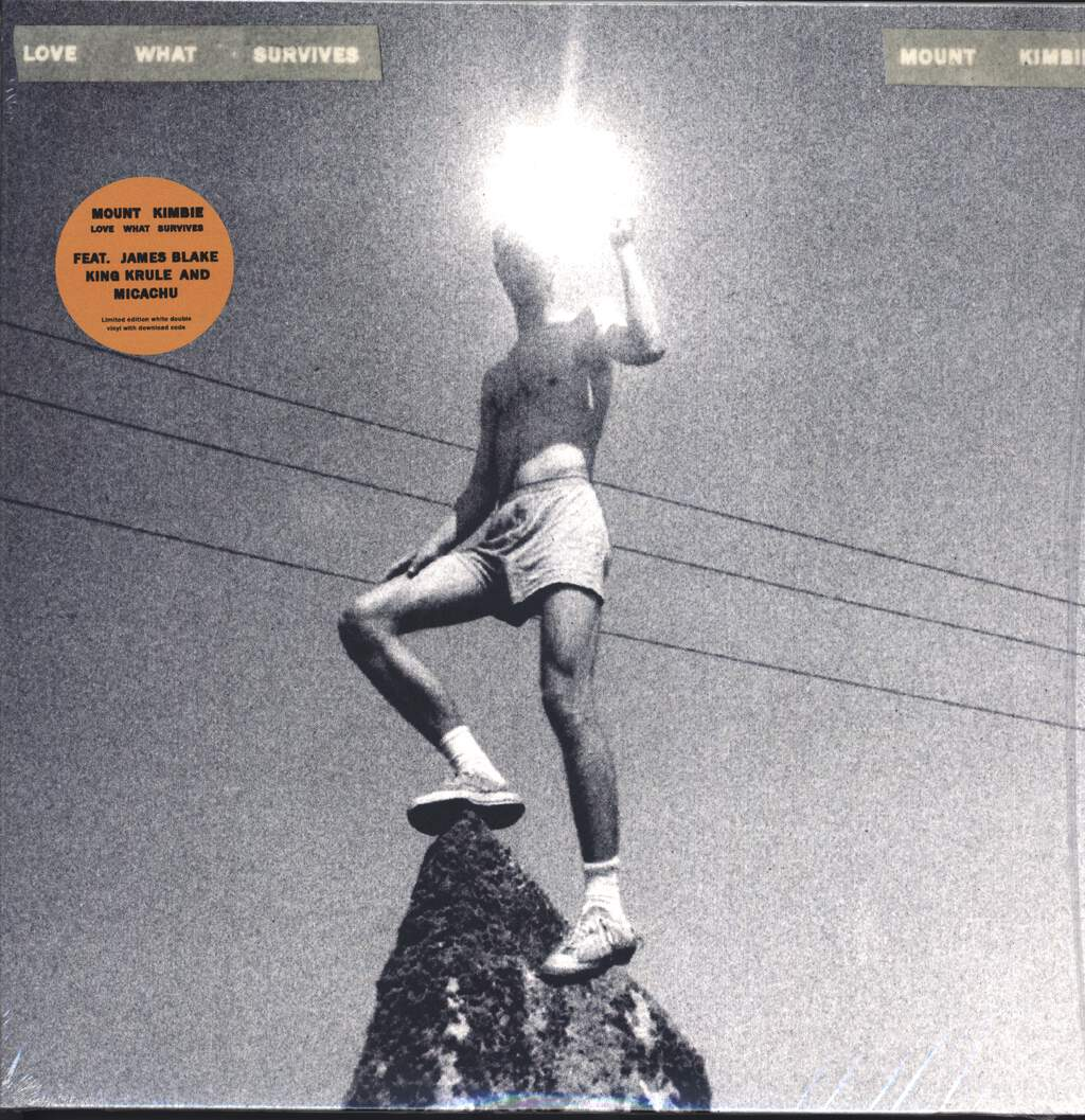 Mount Kimbie: Love What Survives, LP (Vinyl)