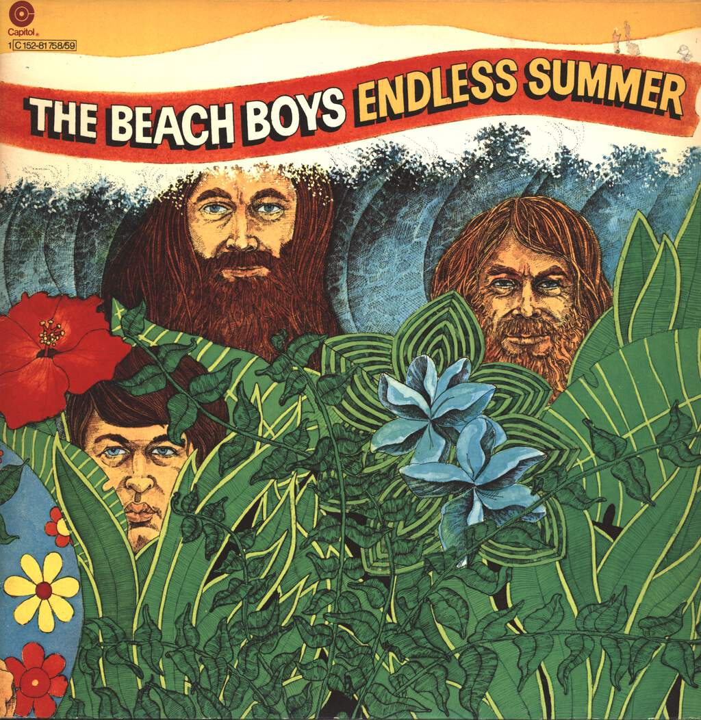 The Beach Boys: Endless Summer, LP (Vinyl)