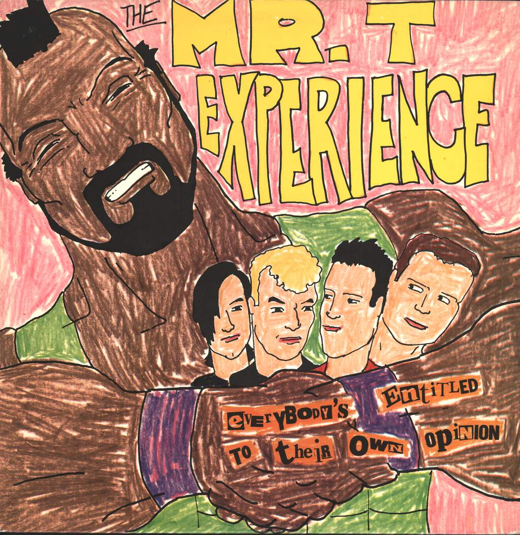 The Mr. T Experience: Everybody's Entitled To Their Own Opinion, LP (Vinyl)