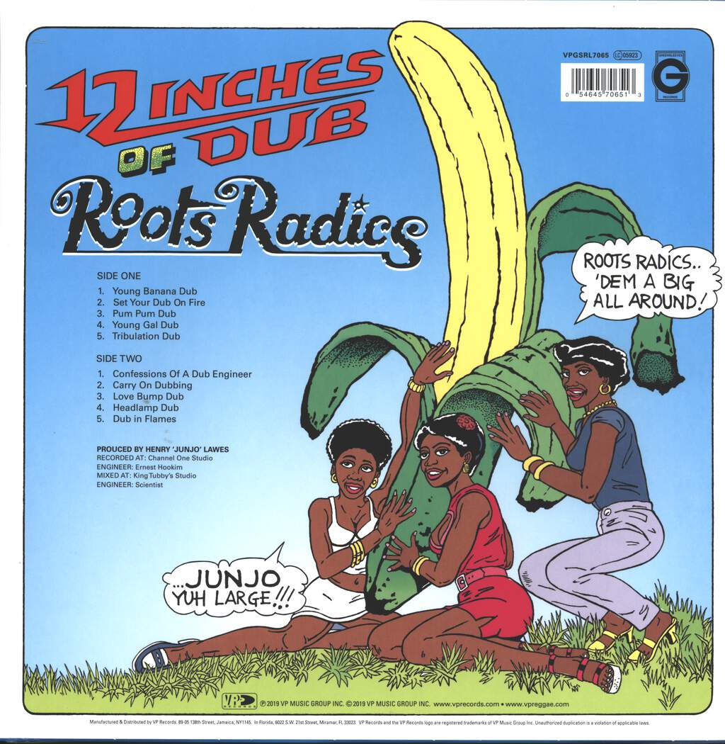 The Roots Radics: 12 Inches Of Dub, LP (Vinyl)