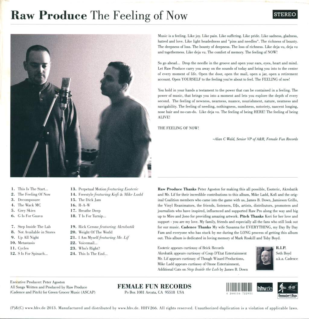 Raw Produce: The Feeling Of Now, 2×LP (Vinyl)