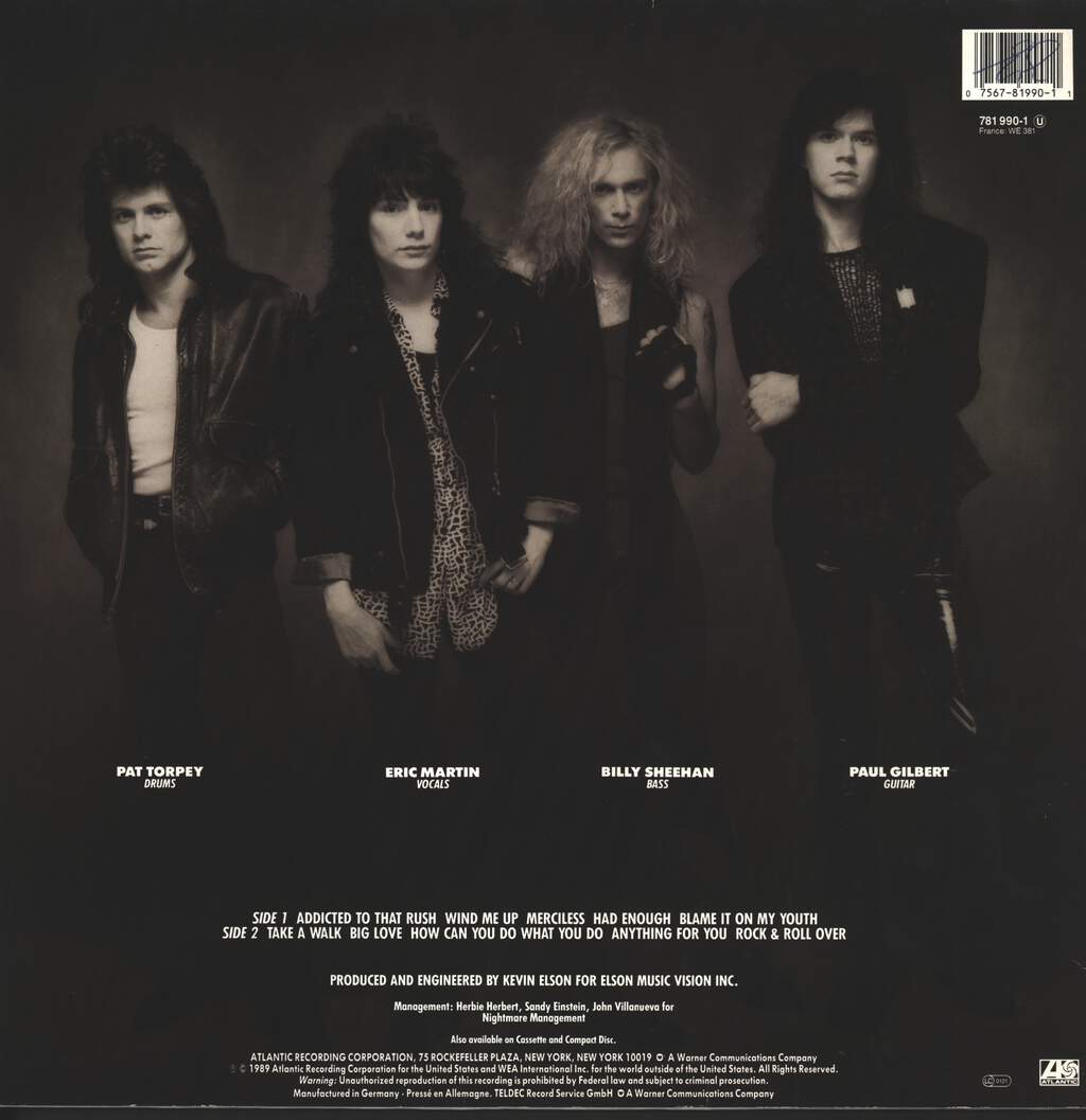 Mr Big: Mr. Big, LP (Vinyl)