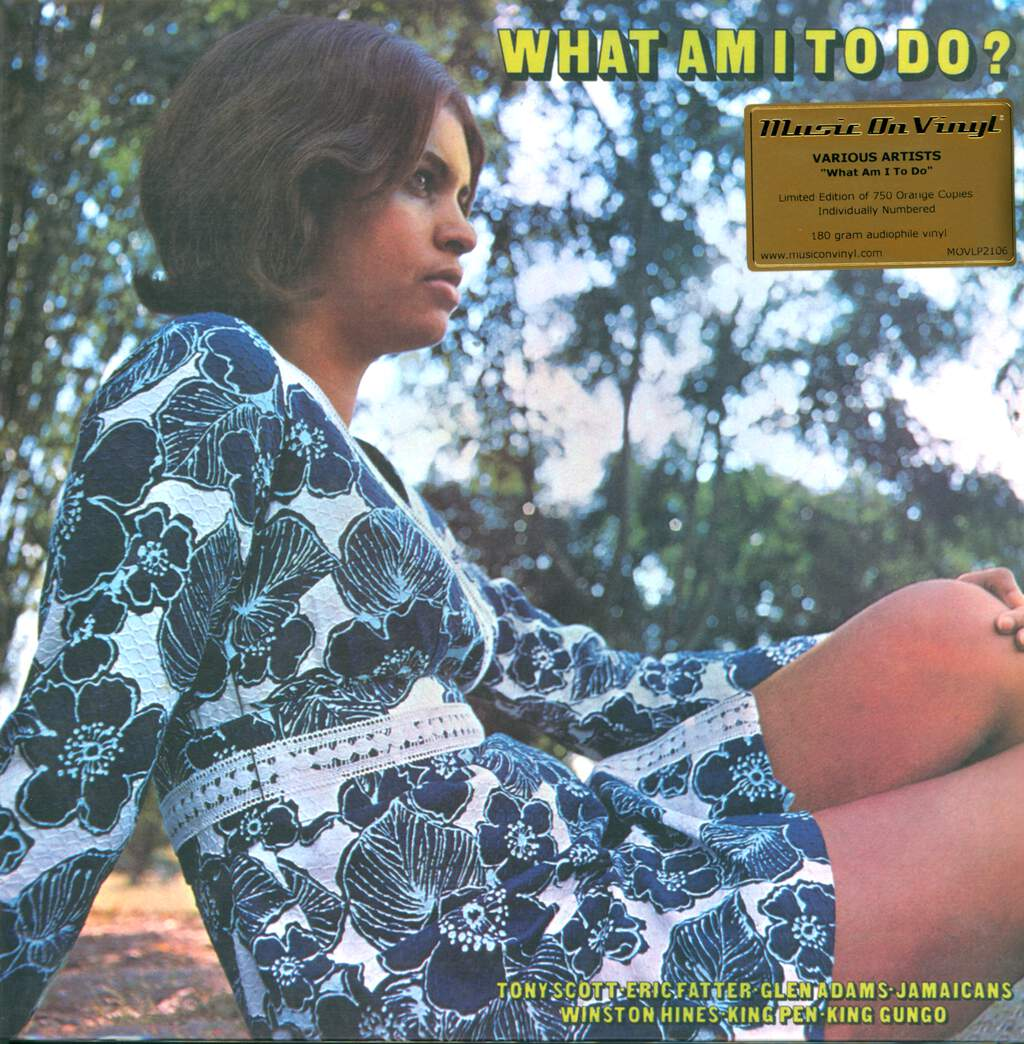 Various: What Am I To Do, LP (Vinyl)
