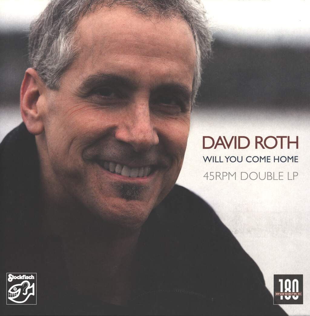 David Roth: Will You Come Home, 2×LP (Vinyl)