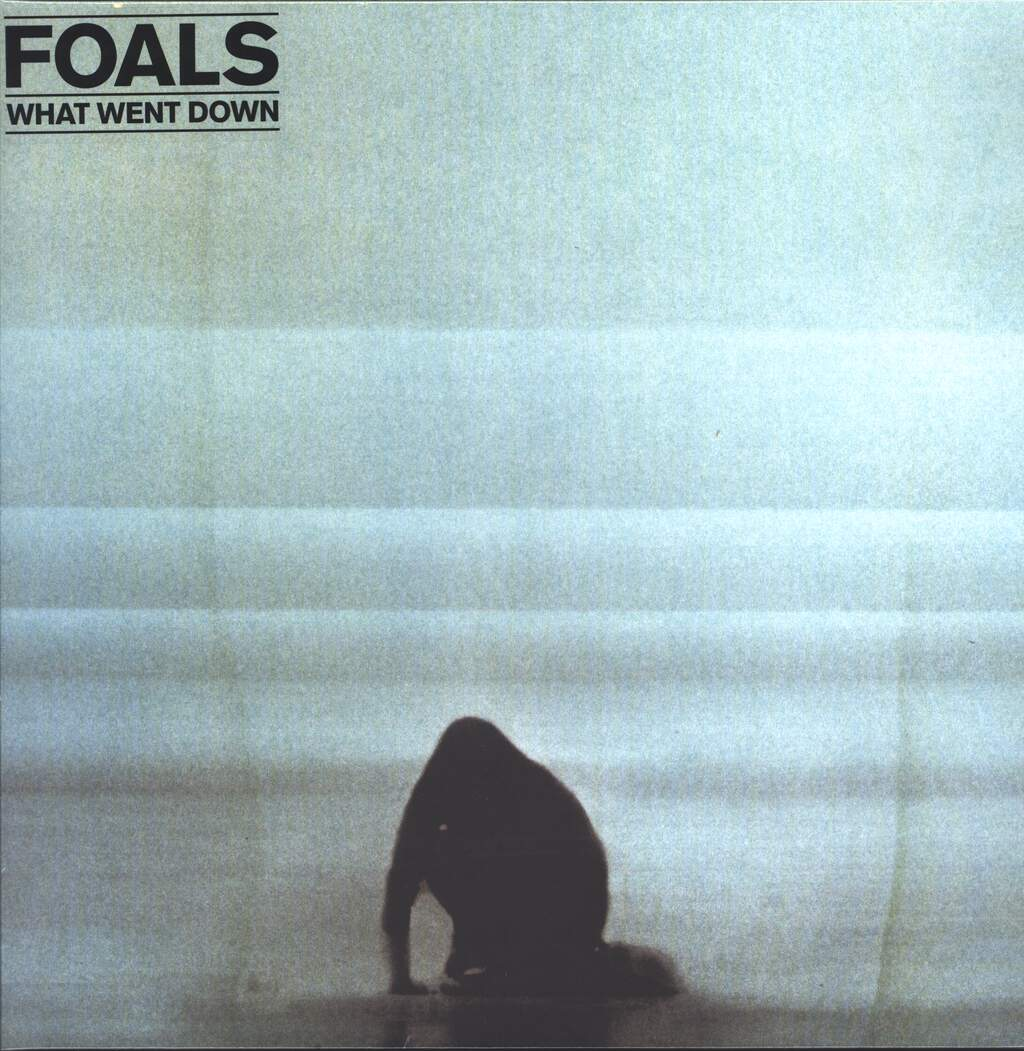 Foals: What Went Down, LP (Vinyl)