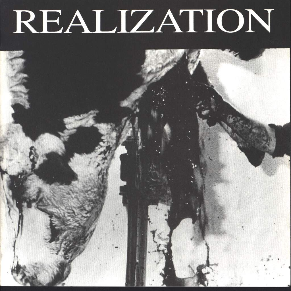 "Various: Realization, 7"" Single (Vinyl)"