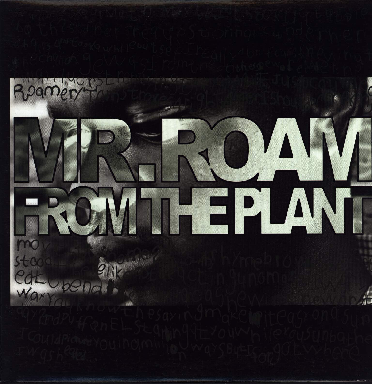 "Mr. Roam from the Plant: Groupie Central/Sunny Kiss Is Wack, 12"" Maxi Single (Vinyl)"