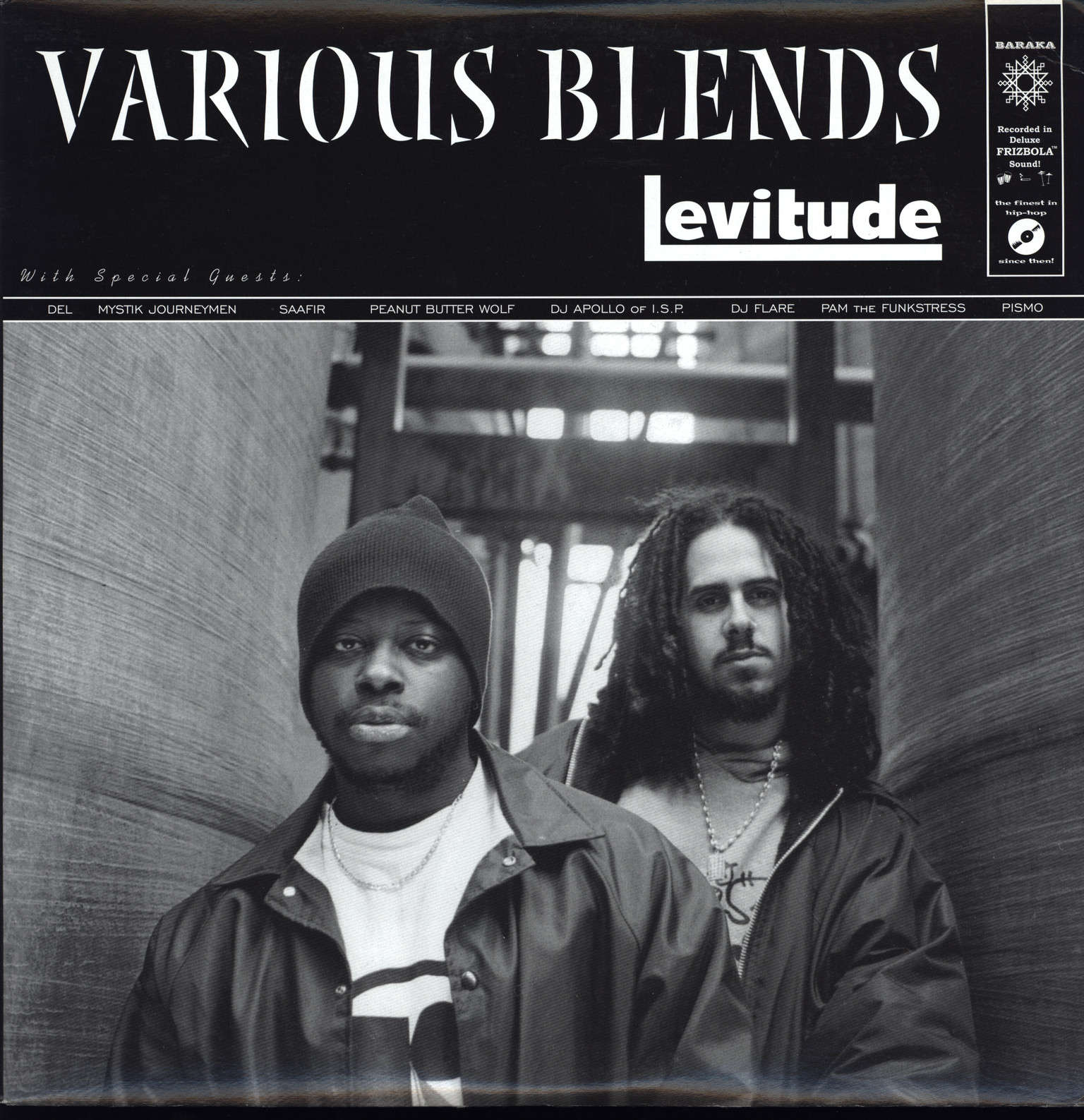 Various Blends: Levitude, LP (Vinyl)