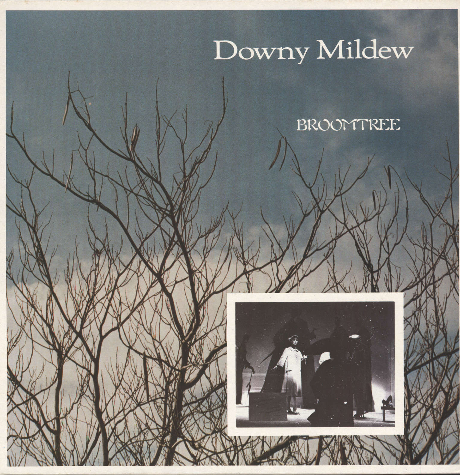 Downy Mildew: Broomtree, LP (Vinyl)