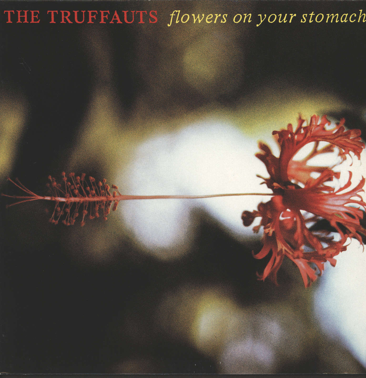Truffauts: Flowers On Your Stomach, LP (Vinyl)