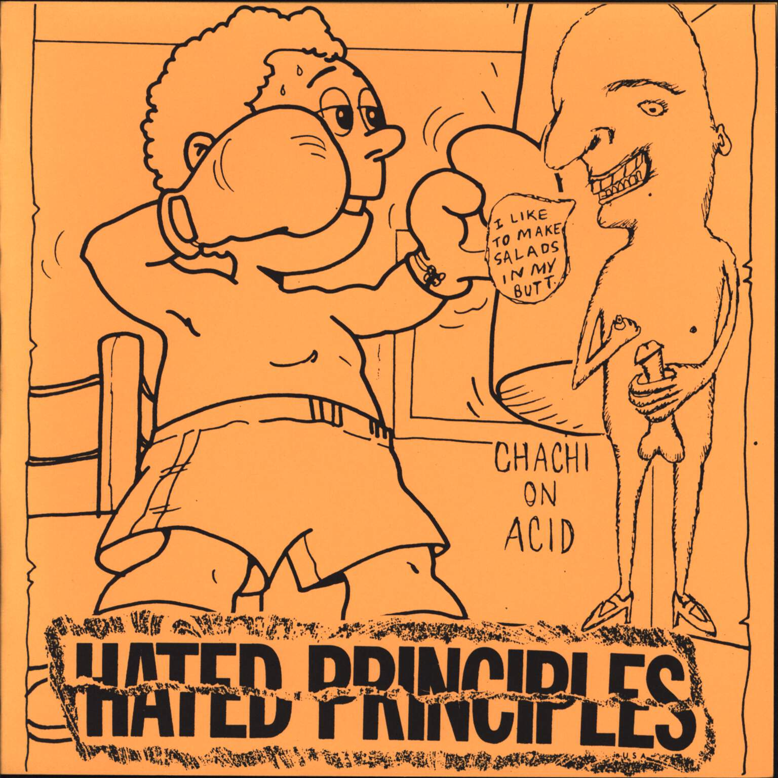 "Hated Principles: I Like To Make Salads In My Butt, 7"" Single (Vinyl)"
