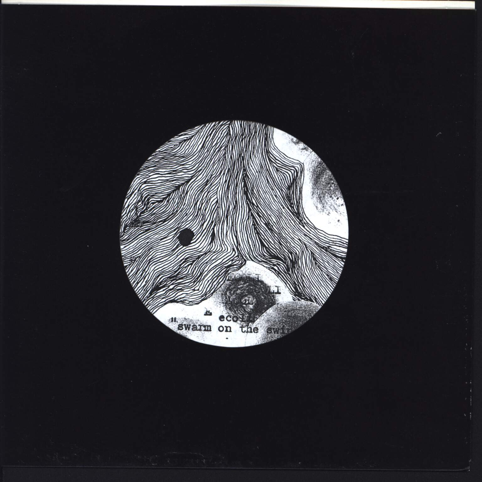 "Ecoli: Swarm On The Swine, 7"" Single (Vinyl)"