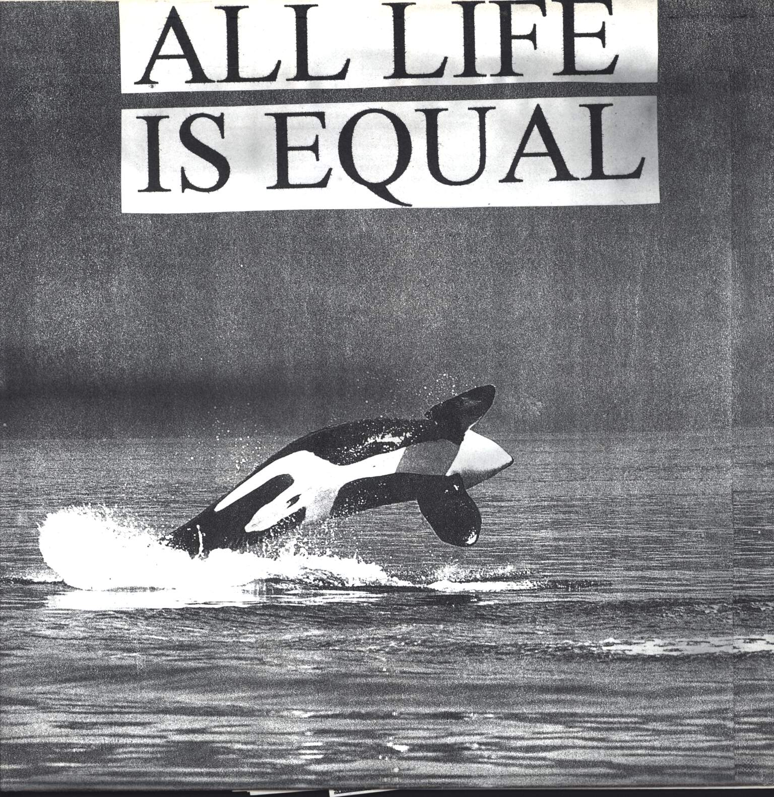 Subway Arts: All Life Is Equal, LP (Vinyl)