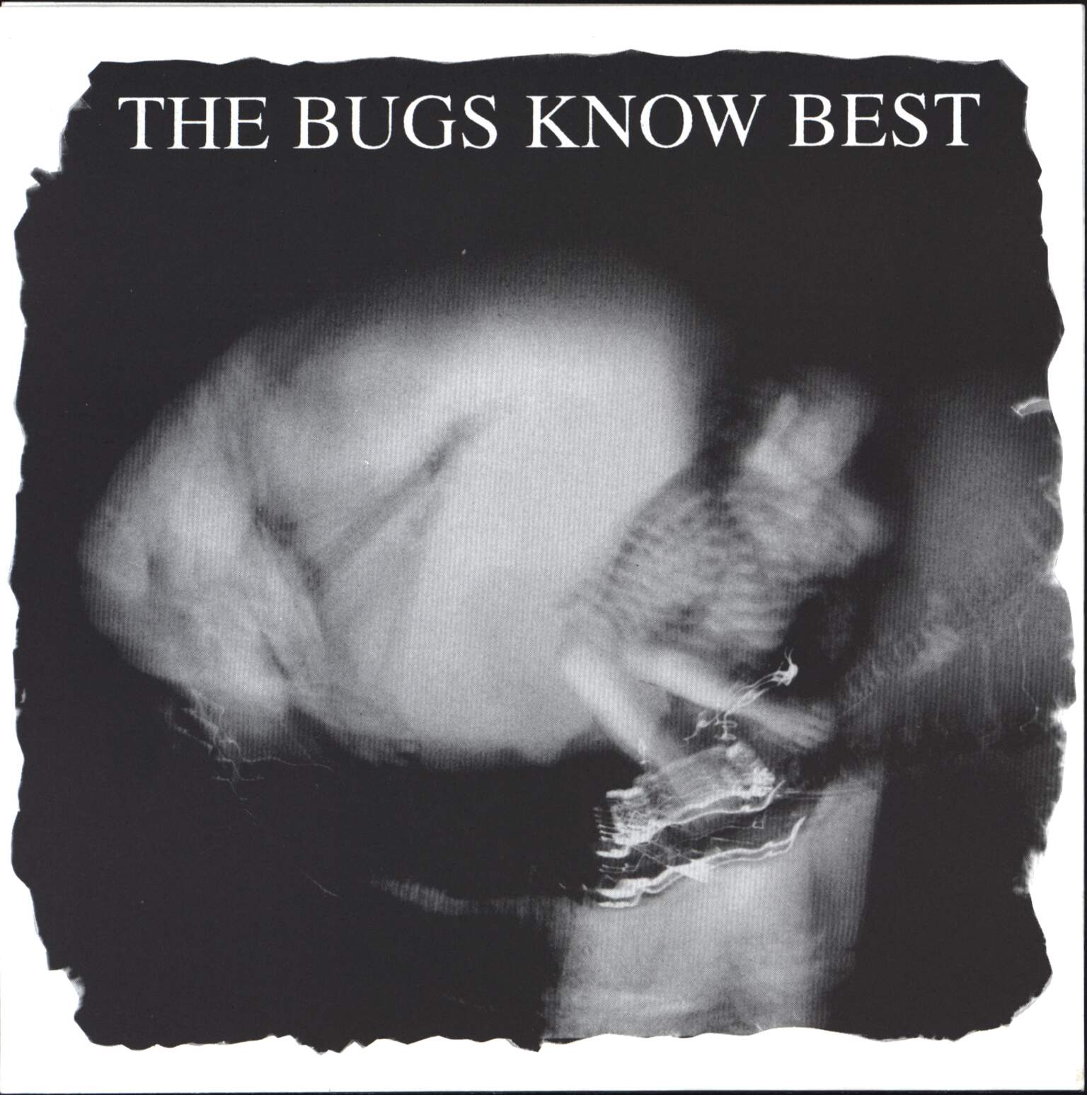 "The Bugs Know Best: Great Kills, 7"" Single (Vinyl)"