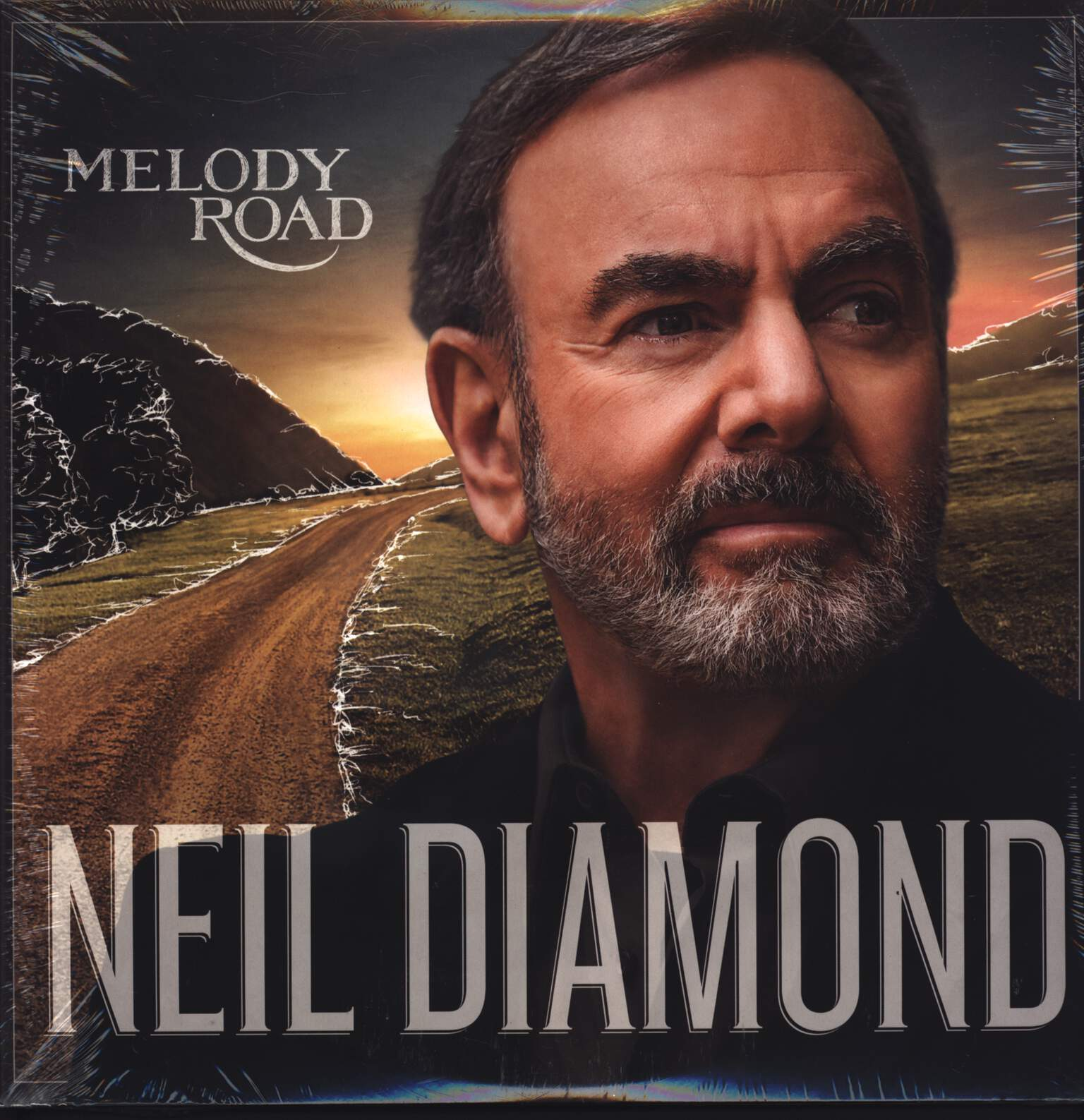 Neil Diamond: Melody Road, LP (Vinyl)