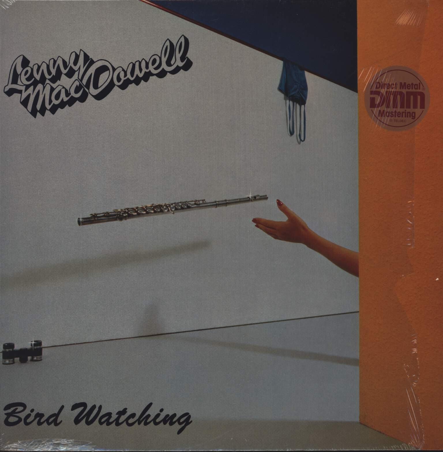 Lenny Mac Dowell: Bird Watching, LP (Vinyl)