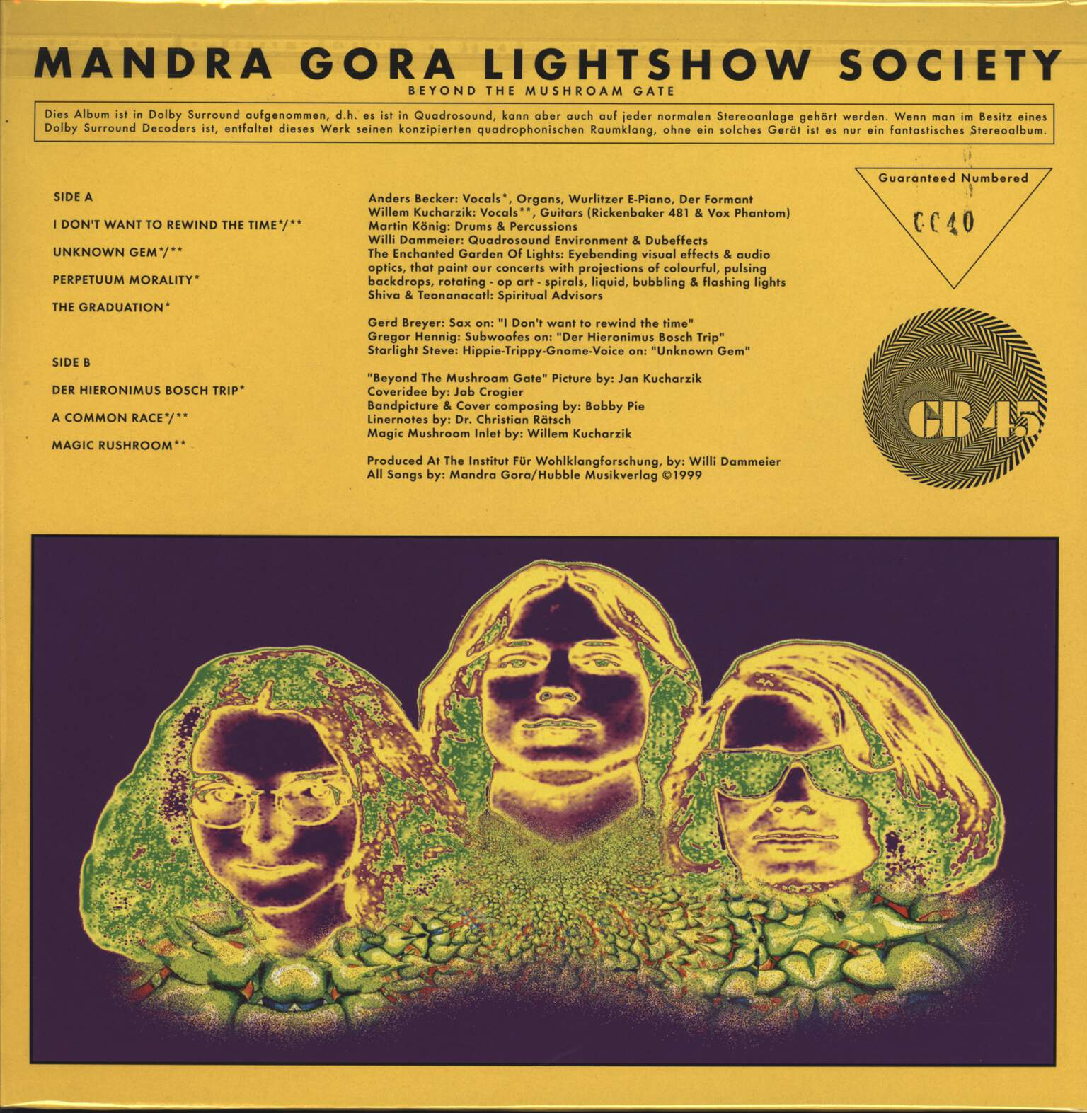 Mandra Gora Lightshow Society: Beyond The Mushroam Gate, LP (Vinyl)