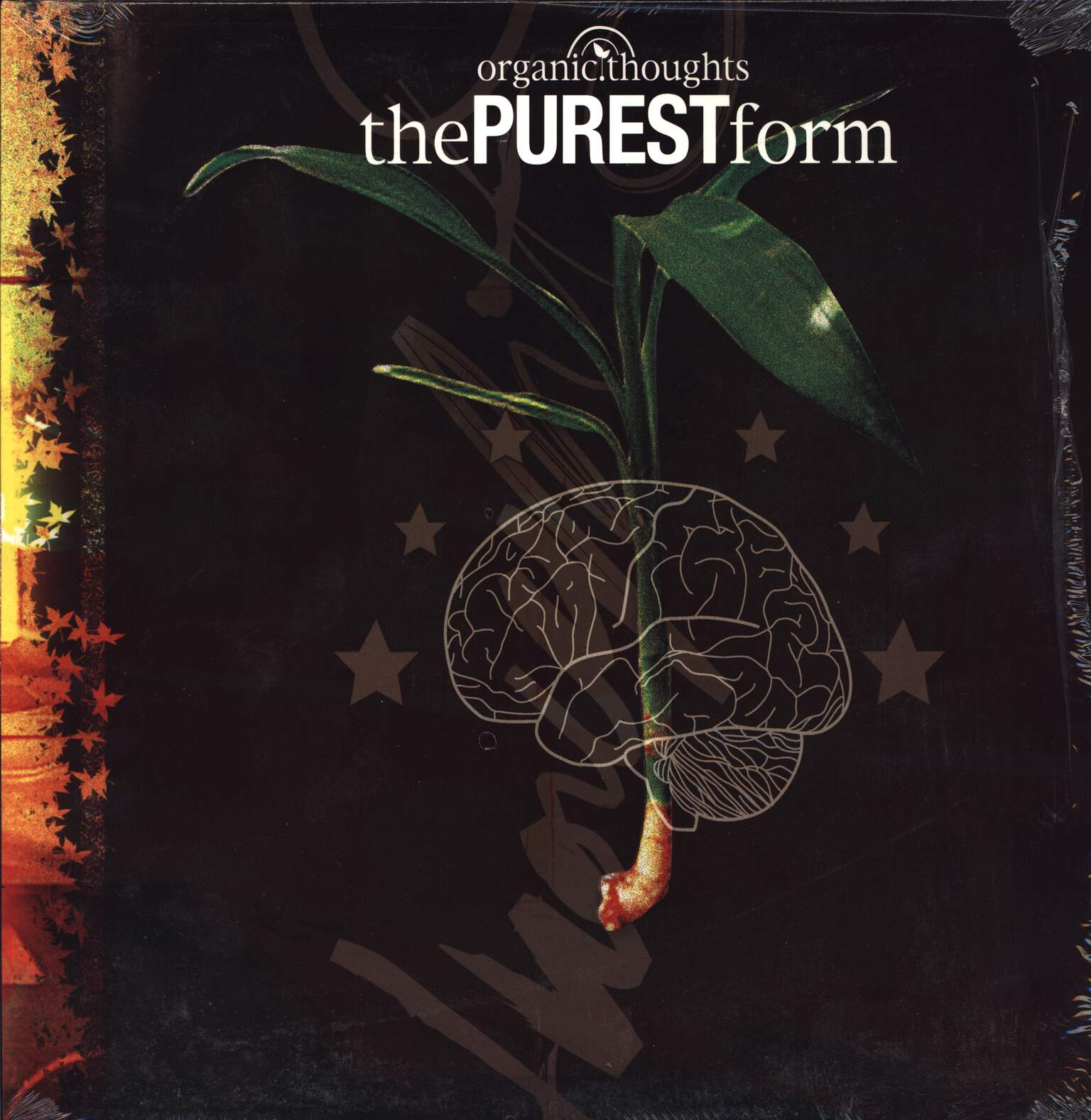 Organic Thoughts: The Purest Form, LP (Vinyl)