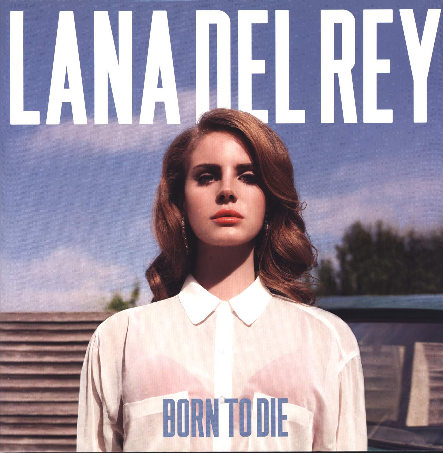 Lana Del Rey: Born To Die, LP (Vinyl)