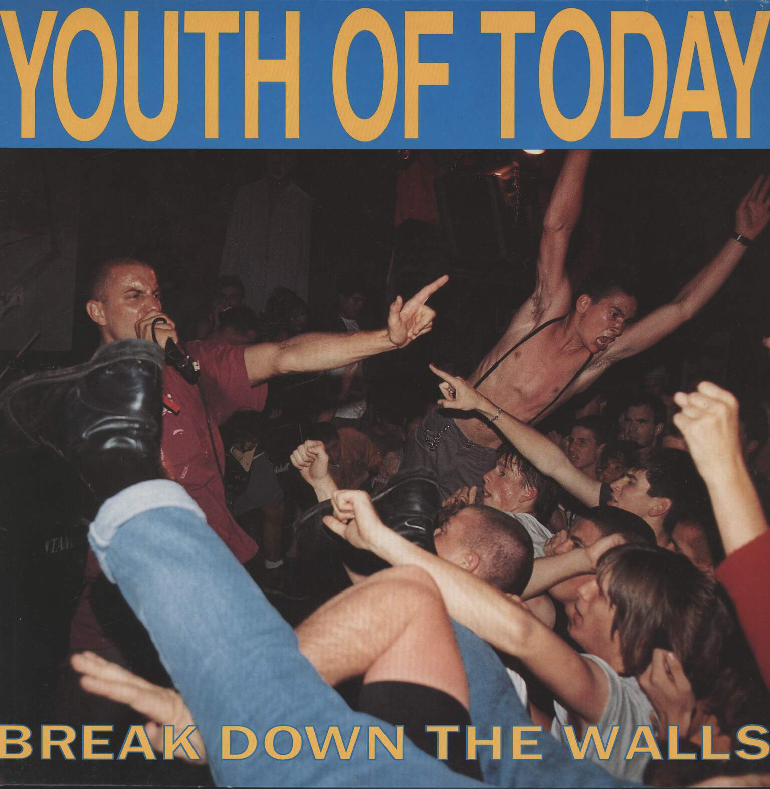 Youth Of Today: Break Down The Walls, LP (Vinyl)