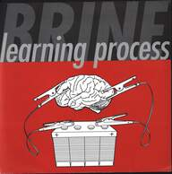 Brine (2): Learning Process