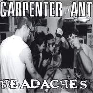 Carpenter Ant/Headaches: Carpenter Ant / Headaches