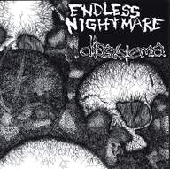 Endless Nightmare/Dissystema: Split
