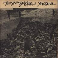 Psychotic Noise/Incisive: Near To The Holocaust Again... / Newd