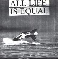 Subway Arts/No More (2): All Life Is Equal