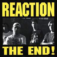 Reaction (11): The End!