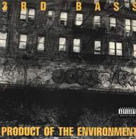 3rd Bass: Product Of The Environment