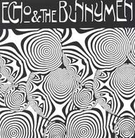 Echo & the Bunnymen: Prove Me Wrong