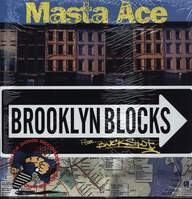 Masta Ace: Brooklyn Blocks / Last Bref